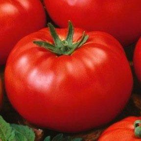 Tomato-Beefsteak